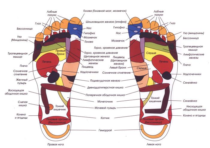 foot-map